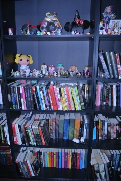 Close up of the shelves