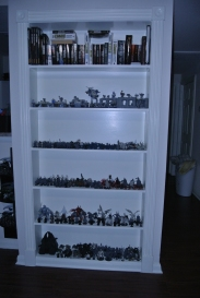 This is Wade's book shelf. I have told you he isn't a reader, most of his shelf is filled with Warhammer 40k models